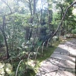 the path ahead, garden in Tokyo