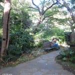 visitor on cel phone, Tokyo garden path