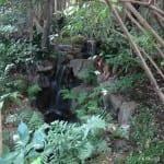 Hidden waterfall, Tokyo garden