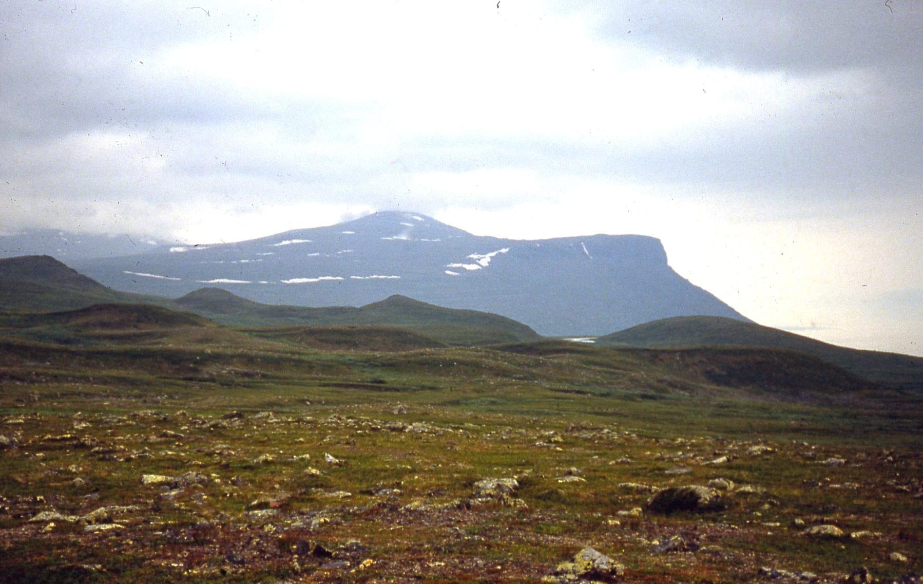 tundra in Sweden