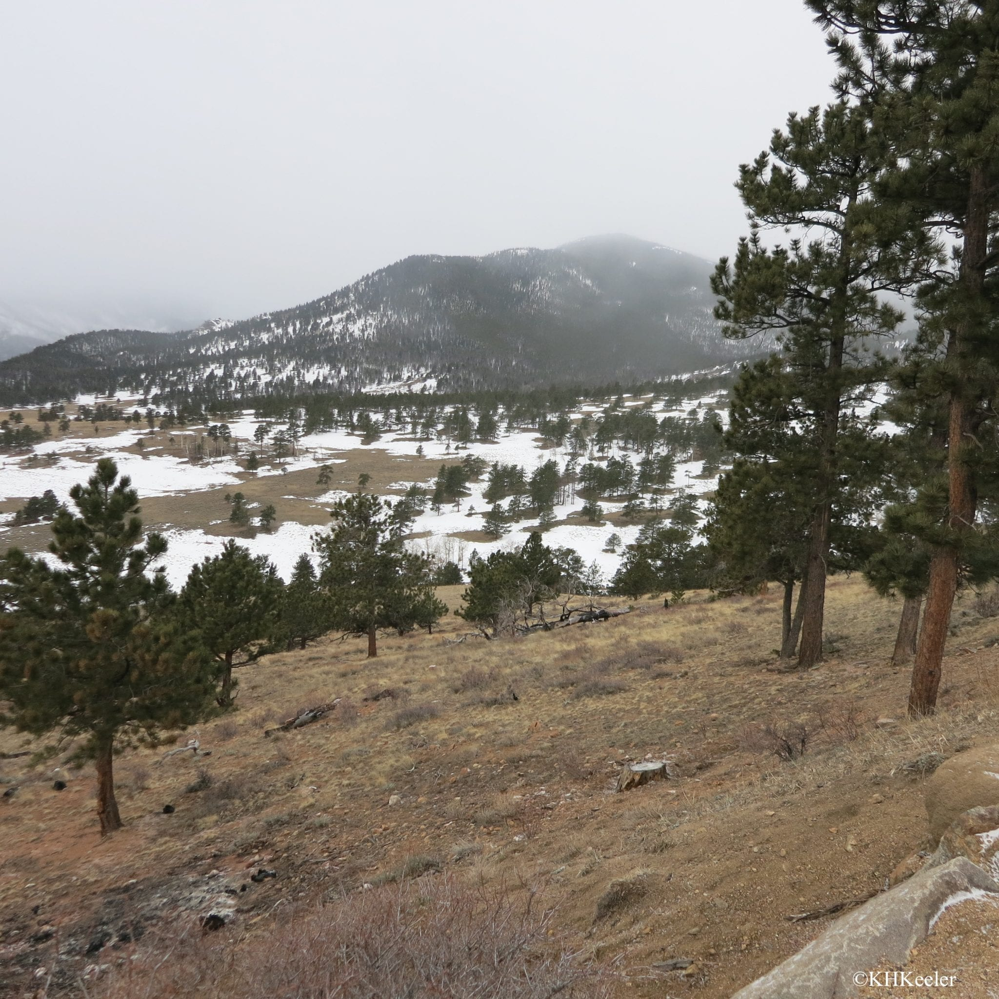 Rocky Mountain National Park in spring