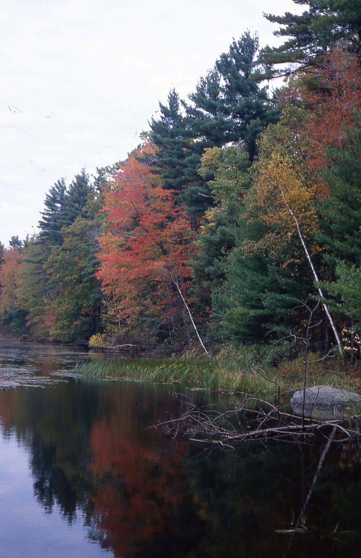 New England autumn color