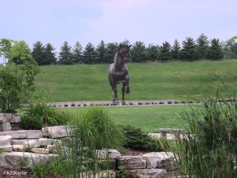 Horse at Friedrich Meijer Garden