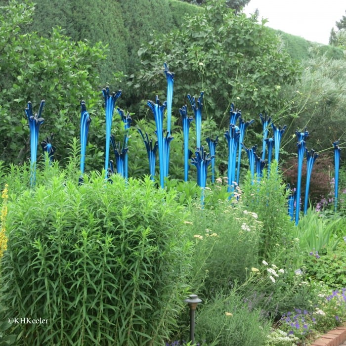 Chihuly's Turquoise Reeds